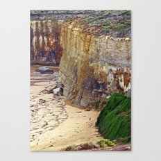 Cliff Hanger Canvas Print