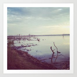Lake Waco Art Print