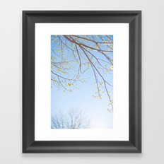 Spring Light. Framed Art Print