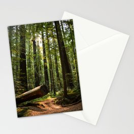 Humboltd Redwoods State Park Stationery Cards
