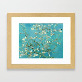 Van Gogh Almond Blossoms Painting Framed Art Print