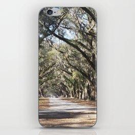 Entering Wormsloe Plantation iPhone Skin