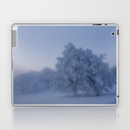 Black Forest Snowy Trees - Landscape Photography Laptop & iPad Skin