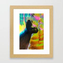 Egyptian cat2 Framed Art Print