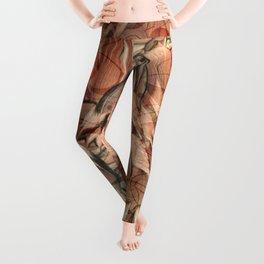 Nasatyas Leggings