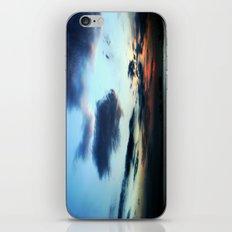 Cameroon iPhone & iPod Skin