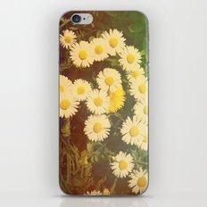 Walking in the Daisies iPhone & iPod Skin