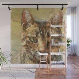 Tabby Cat Wall Mural