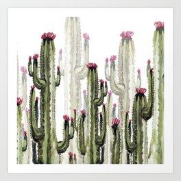 Cactus landscape Art Print