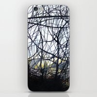 forrest iPhone & iPod Skins featuring Forrest by SuzanaStudio