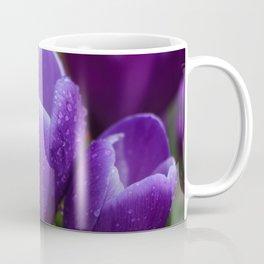 Raindrops On The Crocuses Coffee Mug