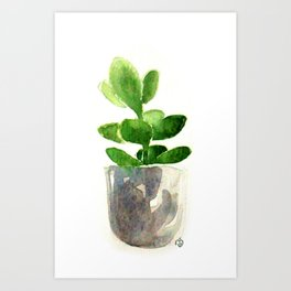 Simple Jadeplant Art Print