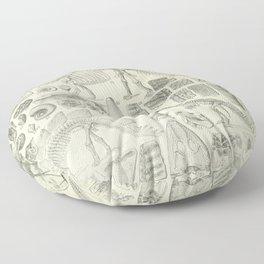 Fossil Chart Floor Pillow
