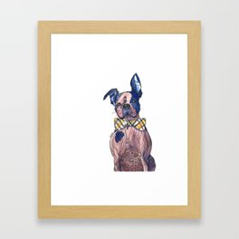 Bulldog in a bowtie, ink and watercolors Framed Art Print