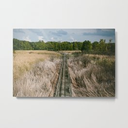 Ohio Swamp II Metal Print