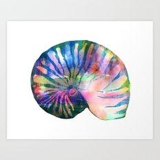 Seashell #1A Art Print