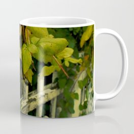 OLD FENCES COLOR Coffee Mug