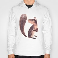 squirrel Hoodies featuring Squirrel by Chuck Groenink