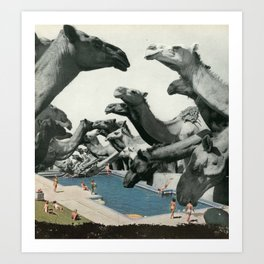 Thirsty Camels Art Print