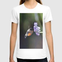 Saveur Lavande T-shirt