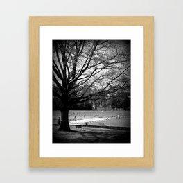 Freedom Park #3 Framed Art Print