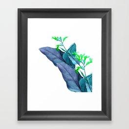 Leaf feathers Framed Art Print