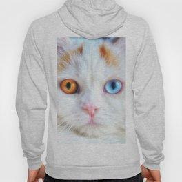 Odd-Eyed White Persian Kitten Hoody