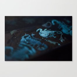 light em up scorpions Canvas Print