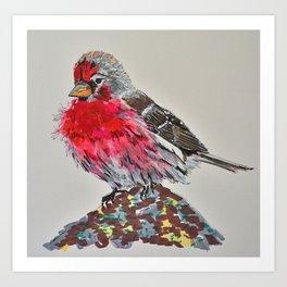 Redpoll Art Print
