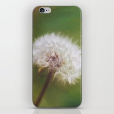 Beauty Beneath It iPhone & iPod Skin