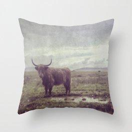 High Land Throw Pillow