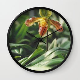 Orchidea. Orchidée. Orchid Flower. Wall Clock