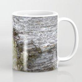 Decay = Regrowth Coffee Mug