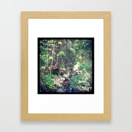 Mountain Stream Vail Framed Art Print