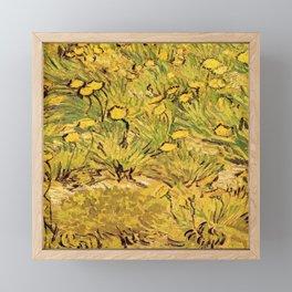 A field of Yellow Flowers by Vincent van Gogh.   Vintage fine art Framed Mini Art Print