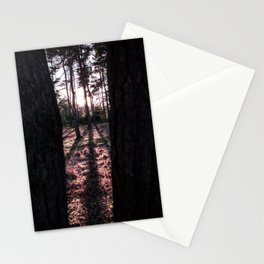 Forest, Wood, Sunset, Frame, Window, Shadows, Landscape, Photography, Nature, Trees, Netherlands Stationery Cards