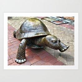 The Tortoise 2 Art Print