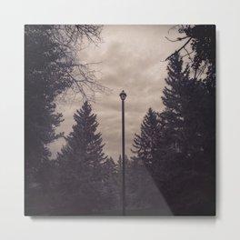 Solo Lamp Post Metal Print