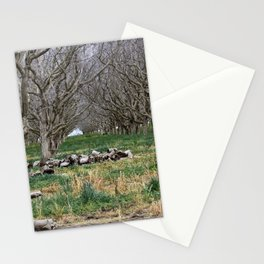 Nature - Crow's Landing Trees 6 Stationery Cards