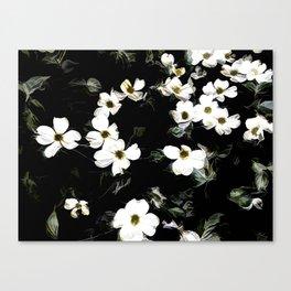Cascading Dogwood Blossoms Canvas Print