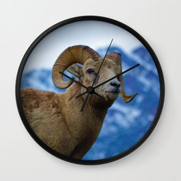 Big Horn Sheep in Jasper National Park | Canada Wall Clock