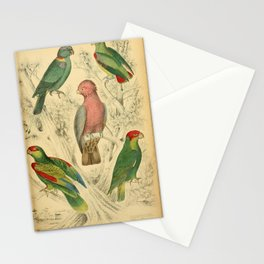 Rose Muffled Cockatoo, Racket-tailed Parrot, Huet's Parrot, Pretre's Parrot, Mitred Parrot15 Stationery Cards