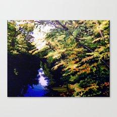 Adumbration Canvas Print
