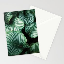 Leaves by Ren Ran Stationery Cards