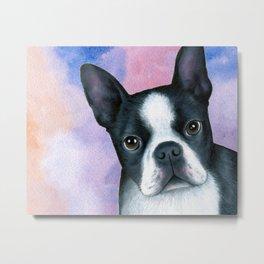 Dog 128 Boston Terrier Metal Print