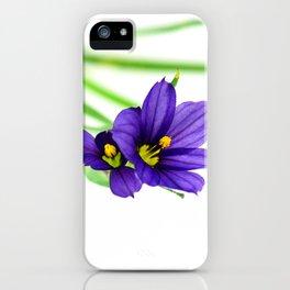 Blue-eyed Grass (Sisyrinchium montanum)  - modern wildflower photo iPhone Case