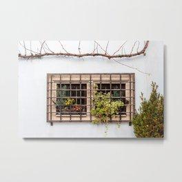 German Window Metal Print
