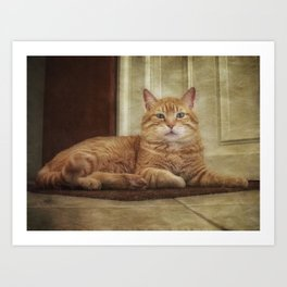 Cattitude Is Everything. Art Print