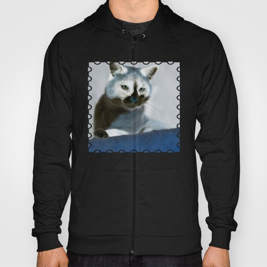 Blue Snow Shoe Cat on the Prowl Hoody