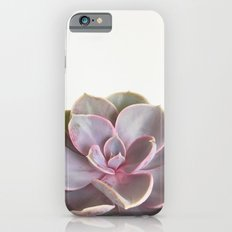 Purple Succulent iPhone 6s Slim Case